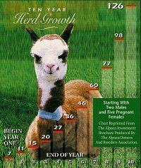 10 Year Alpaca Herd Growth - Start with 5 pregnant females, 2 wethers, females mated annually from 18mths of age, assuming 95% live births .... Ends with 126 alpacas!
